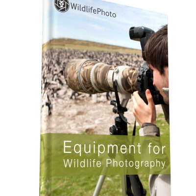 Equipment for Wildlife Photography