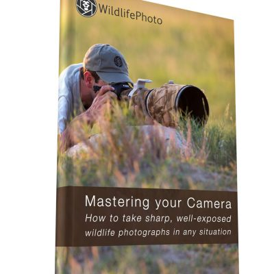 Mastering your Camera