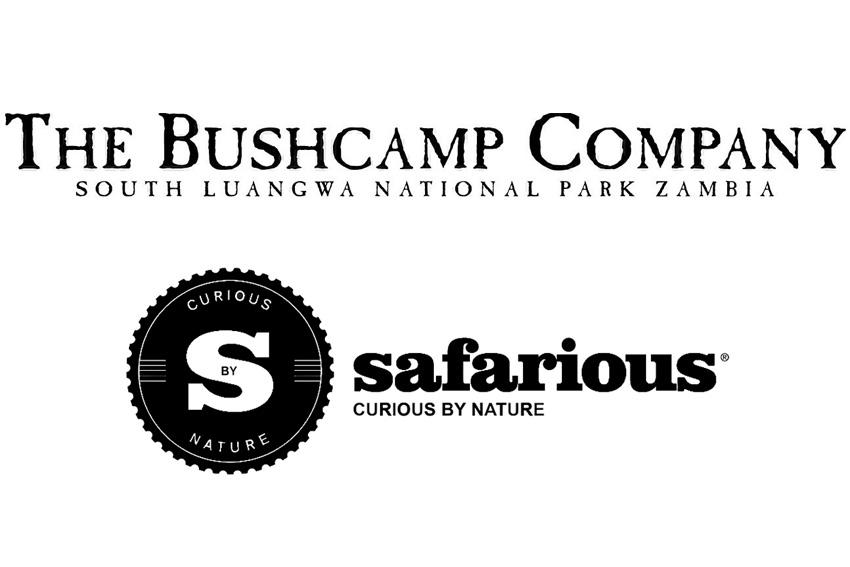 safari logos